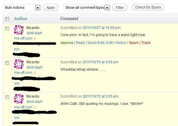 Ricardo DSMO blog comments (2)